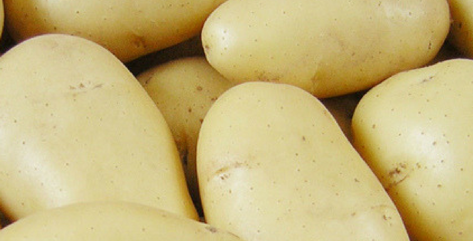 Potato healthy or unhealthy?